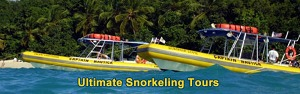 Ultimate Snorkeling Adventures