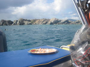 Captain Nautica Excursions - Half Day Snorkeling Tours